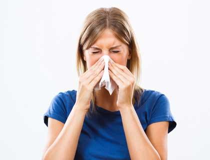 Rug Allergy Treatment nav